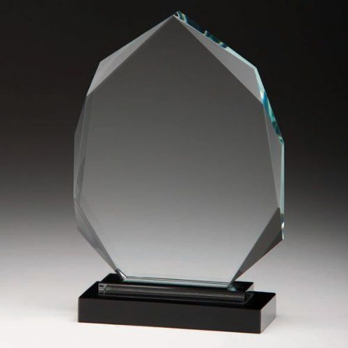 Clarity Optical Crystal Award 230mm